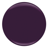 Designer Label  Entity One Color Couture